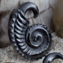 Black horn ammonite design