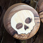 Olivewood skull plugs