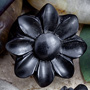 Arang wood wildflower plugs