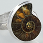 Sterling silver and ammonite ring (Size 9)