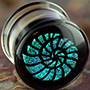 Pyrex glass dichro nautilus plugs