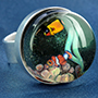 Steel and pyrex glass aquarium ring (Adjustable)