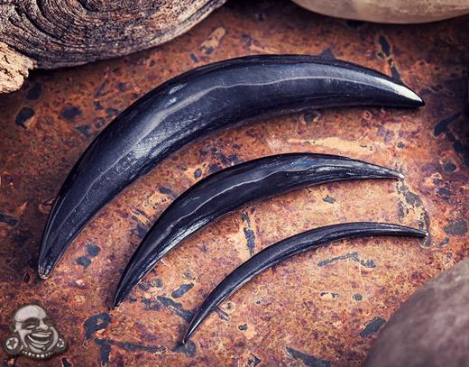 Black Horn Septum Tusk