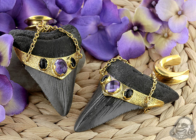 Solid Brass and Megalodon Teeth Weights with Amethyst