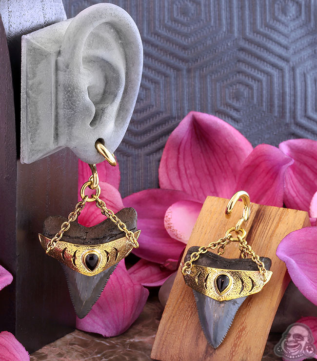 Solid Brass and Megalodon Teeth Weights with Black Onyx