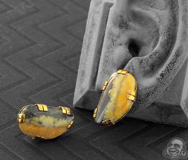 Brass Plugs with Free Form Bumble Bee Jasper
