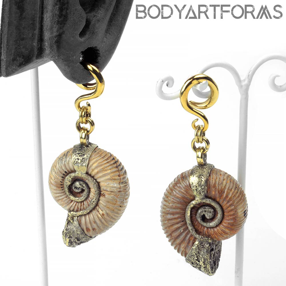 Solid Brass and Madagascar Ammonite Weights