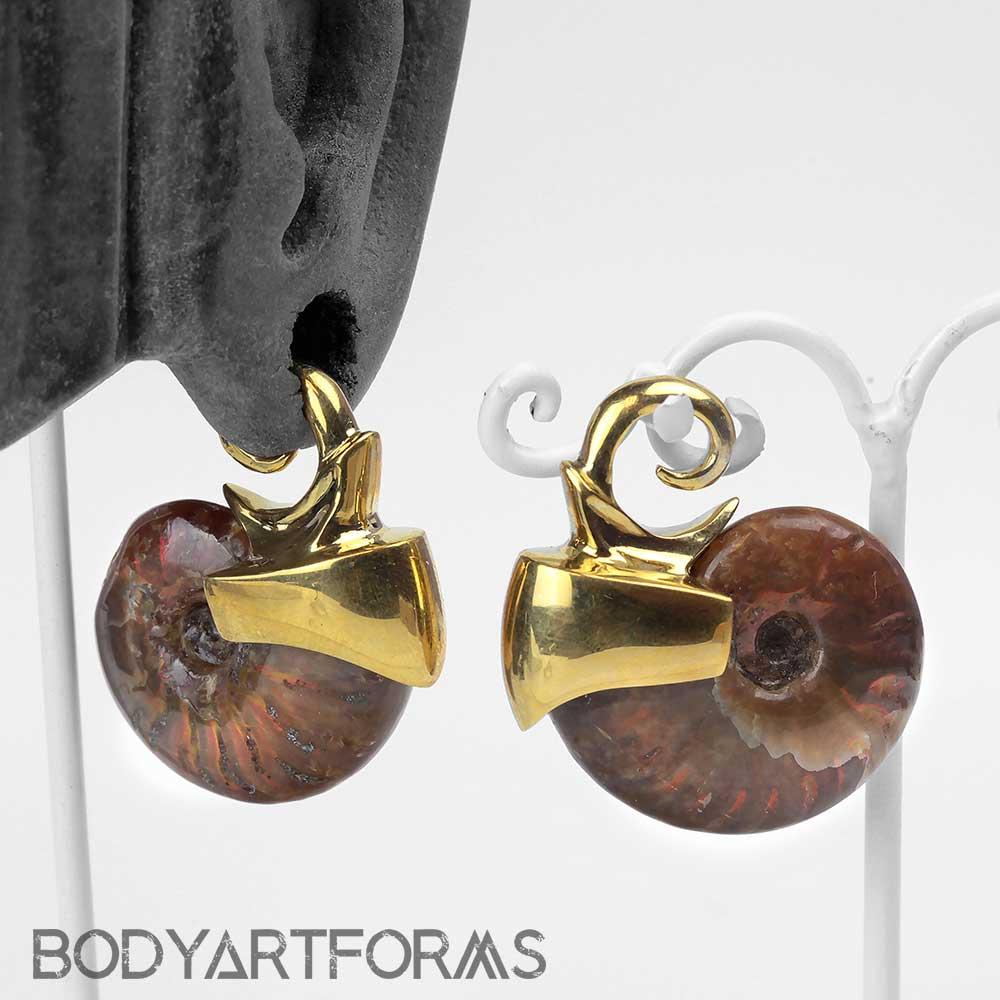 Yellow Brass Ammonite Weights